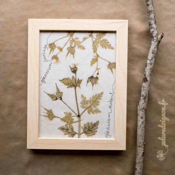 Cadre Tatakizome | Géranium sauvage